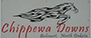 Chippewa Downs Plata 2021-06-20